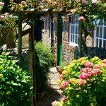 Gave en eenvoudige tips voor je tuin